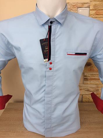 Рубашка однотонная Gold Milano, фото 2