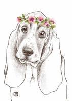 """Открытки """"Породы собак глазами художника"""" (12 открыток) от Наталии Павлюк"""