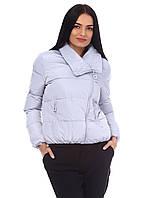 Осенняя короткая куртка оптом D6522