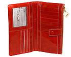 Женский кошелек из натуральной кожи Jccs (18,5x10 см), фото 3