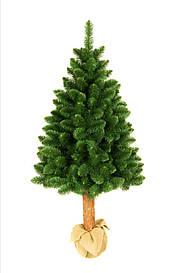 Штучна новорічна сосна на натуральному стовбурі 180 см + гірлянда у подарунок