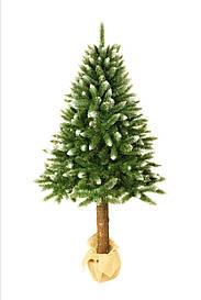 Штучна новорічна ялинка на натуральному стовбурі 180 см + гірлянда у подарунок