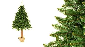 Штучна новорічна ялинка на натуральному стовбурі 200 см + гірлянда у подарунок, фото 2