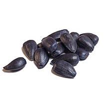 Семена Подсолнечника Златсон От Производителя, фото 3